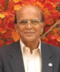 Professor Emeritus Bijayanand Misra